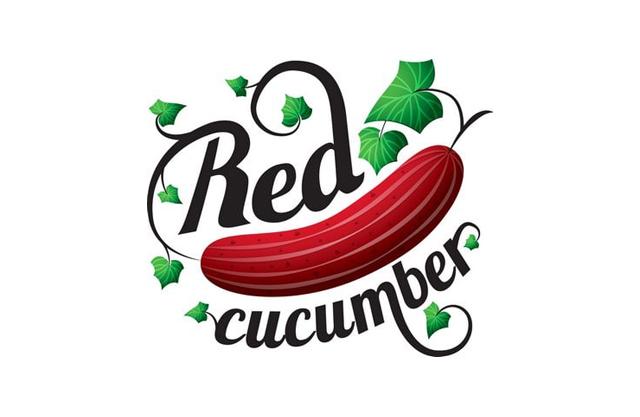 Фотостудия Red cucumber